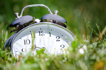 morning blue hour: Old metal alarm clock among grass and flowers.