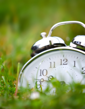 Old metal alarm clock among grass and flowers. photo