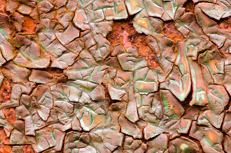 crannied: Peeling brown green paint reveals the texture of the rust beneath.