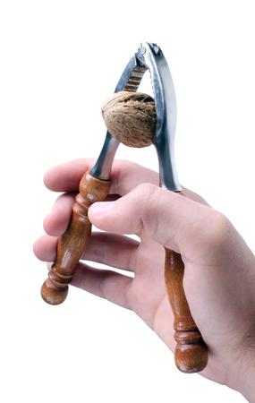 nut cracker: Hand holding nut cracker with wallnut inside.