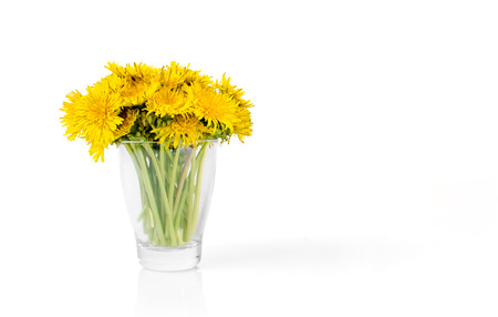 bouqet: Dandelion bouqet in glass isolated on white background as a natural summer decoration. Stock Photo