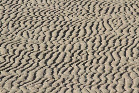Sand textured with abstract patterns of waves, lines and ruts highlighted by shadows running into the distance.