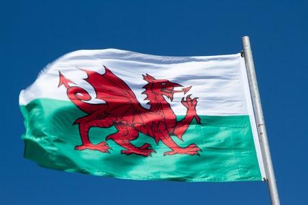 welsh flag: Bandiera gallese con un drago rosso su verde e bianco svolazza nel vento contro un cielo blu. Archivio Fotografico