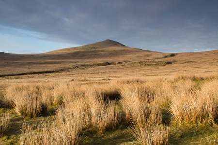 Dried grass tufts on moorland leads to the mountain peak in the distance with a cloudy sky. Stock Photo - 10347537