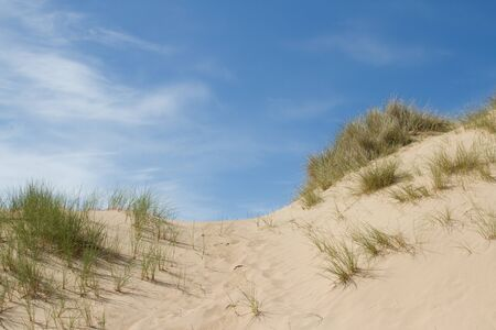 A sand dune on a sunny day with grasses against a bright blue sky with cloud.