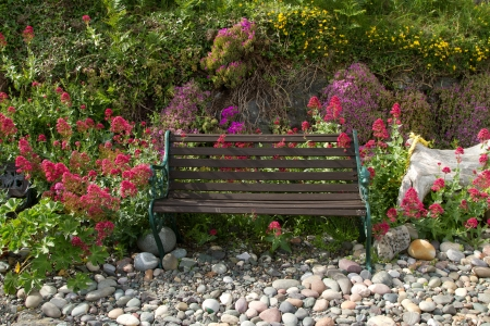 A metal framed wooden slat bench on pebbles with flowering plants surrounding.