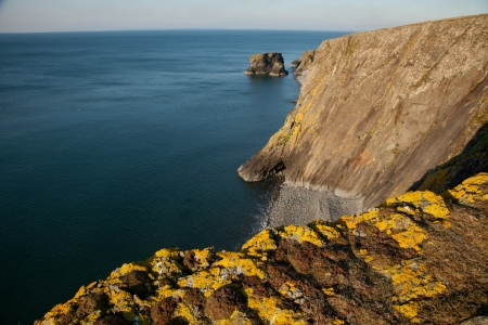 tal: Yellow lichen covered rock on shale cliffs looking out towards a pebble beach and sea cliffs with the sea stack Trwyn y Tal in the distance. Wales coast path, Trefor, Lleyn peninsular, Wales, UK.