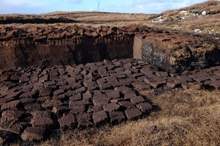 A section of moorland with a bank of peat cutting and the drying squares layed out.
