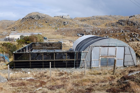 enclosure: A poly tunnel on moorland with fence and enclosure area.