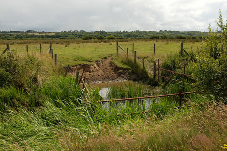 An area of river fenced off as a watering hole next to a field of green grass. Stock Photo
