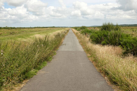 lon: A tarmac cycle track leads through marshland, Lon Cyfni, Anglesey, Wales, UK.