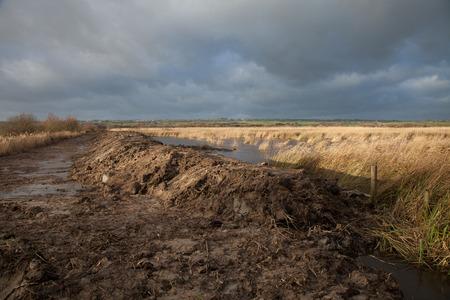 tortillera: Proyecto de prevenci�n de inundaciones Weland con tierra se movi� para formar un dique en el borde de un canal de agua con las ca�as contra un cielo nublado oscuro.