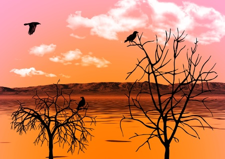 The evening sky reflected in water and ravens on trees