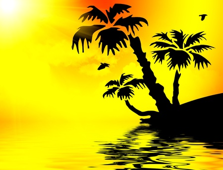 Silhouette of palm trees on seacoast at sunset photo