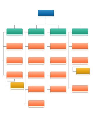 조직 구조