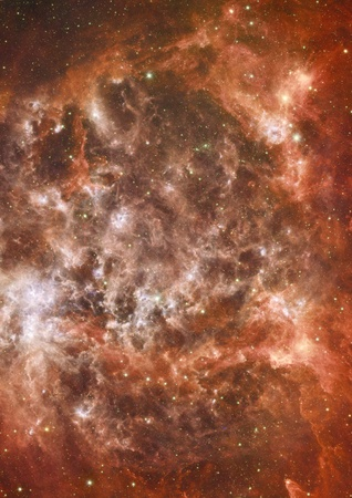 Star field in space and a nebulae photo