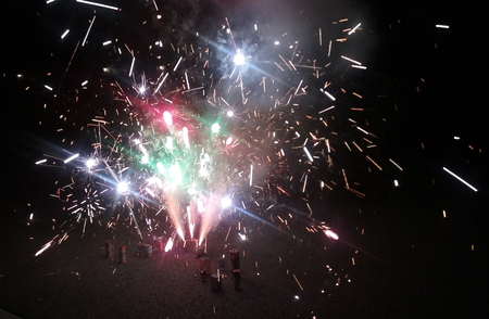 A snapshot of a firework display on the Fourth of July. Imagens