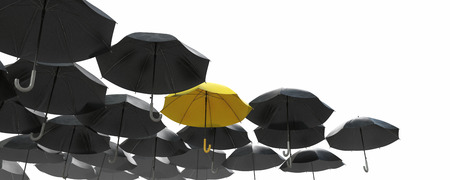 contrastive: A sea of black umbrella but the yellow one standing out  Image isolated on white background