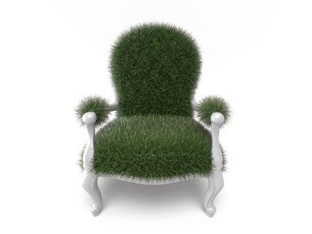 Grass grown on a chair