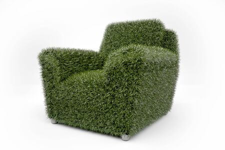 Grass grown on a chair photo