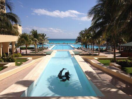 royals: Royal Resort Cancun