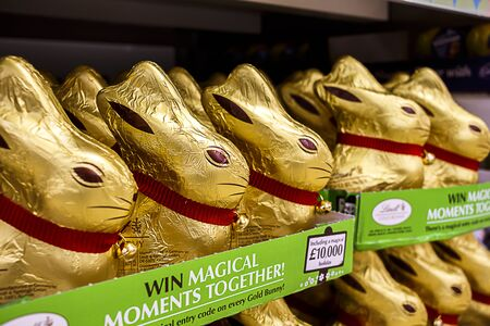 Lindt Easter Bunnies for sale in a store