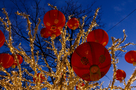 Chinese New year Lanterns Hanging From A Tree Reklamní fotografie