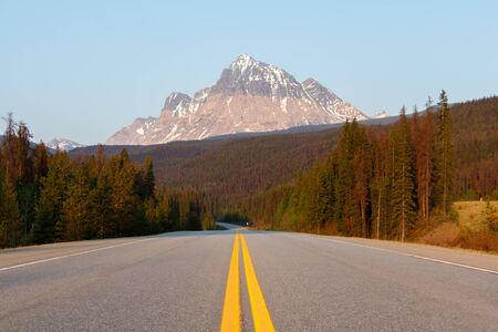Evening road lined with trees leading to high mountain