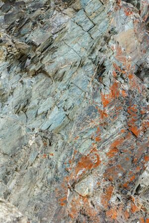 Abstract Orange and Green Rock Background Texture