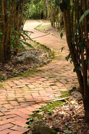adoquines: adoquines de ruta Foto de archivo