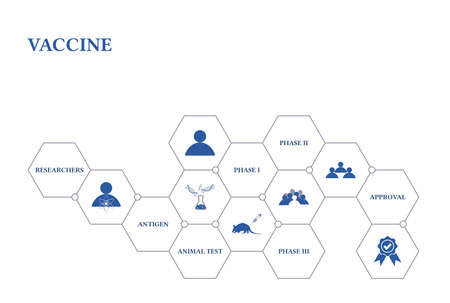 Vaccine. Banner with icons. Researchers, Antigen, Animal Test, Phase I, Phase II, Phase III, Approval.