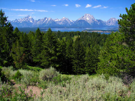 Jackson Hole in the Summer, Grand Teton national Park, wyoming