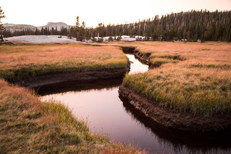 muir: Yosemite in summer during sunset along john muir trail