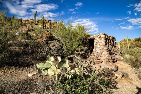 tucson: Catalina Mountain State Park near Tucson saguaro national park