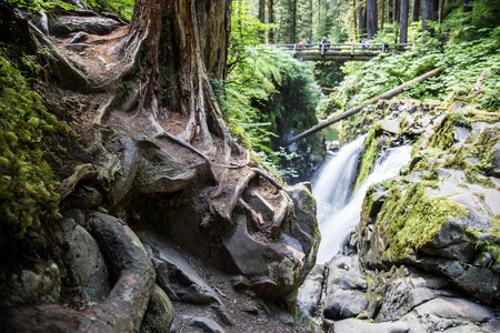 sol: Sol Duc Falls in Olympic National Park in Summer Stock Photo