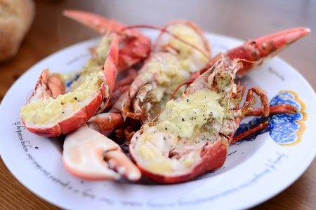 The best banquet for the most exigent tastes the lobster... Фото со стока - 20964742