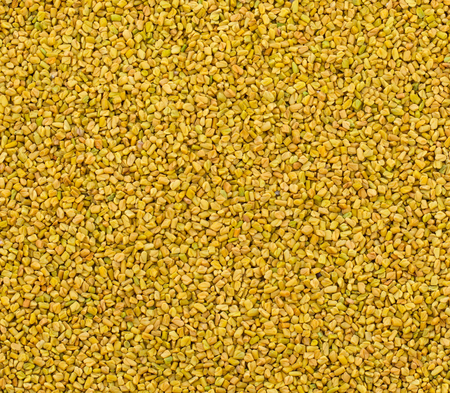 Fenugreek Seeds or Methi