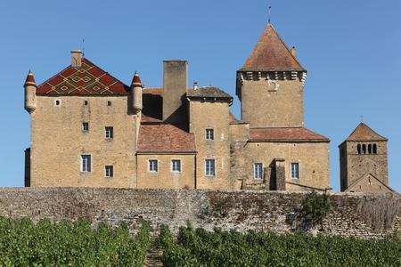 castle buildings: Pierreclos castle in Burgundy, France Editorial
