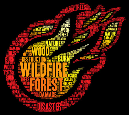 wildfire: Wildfire word cloud concept