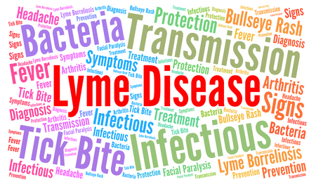 lyme disease: Lyme disease word cloud concept