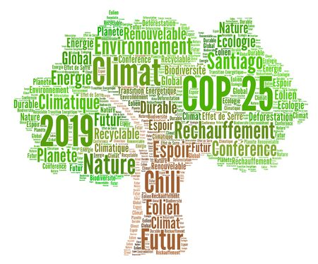COP 25 in Santiago, Chile word cloud in French language