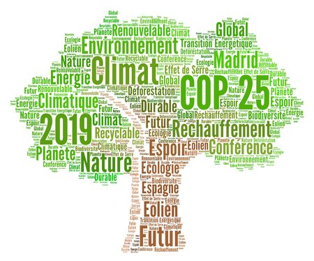 COP 25 in Madrid, Spain word cloud in french language