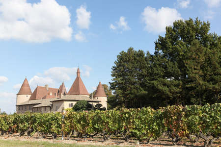 Castle of Corcelles with vineyards in Beaujolais, France Éditoriale