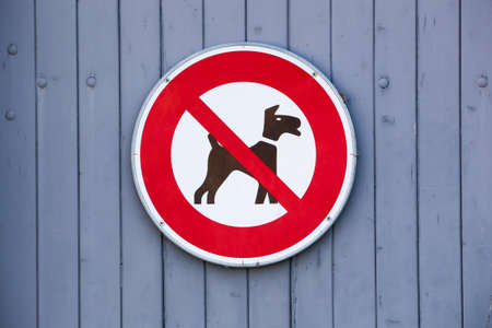 No dogs allowed sign on a wall Banque d'images