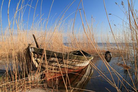An old boat in reed. Stock Photo