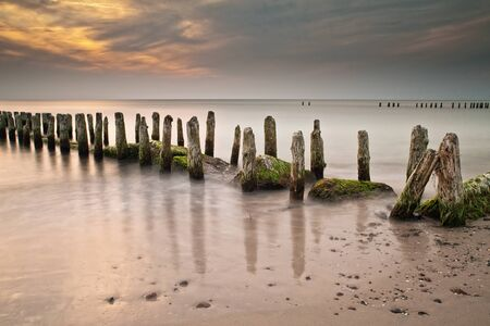 On shore of the Baltic Sea. photo
