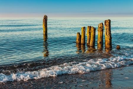 Groyne on shore of the Baltic Sea