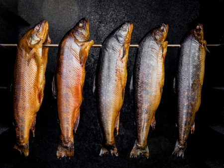 Smoked fish in a smoker  Stok Fotoğraf