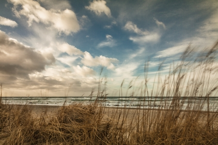 Dune on shore of the Baltic Sea  Stock Photo
