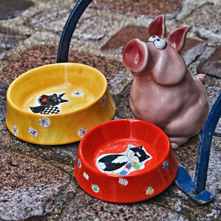 beggar's: Feeding dishes with a pig